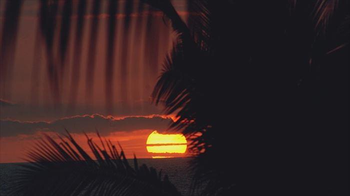 ハワイのコナ